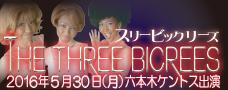 05303bicrees228-90